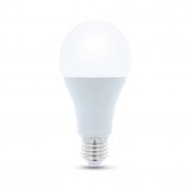 LAMPE LED E27 110W / 1700LM